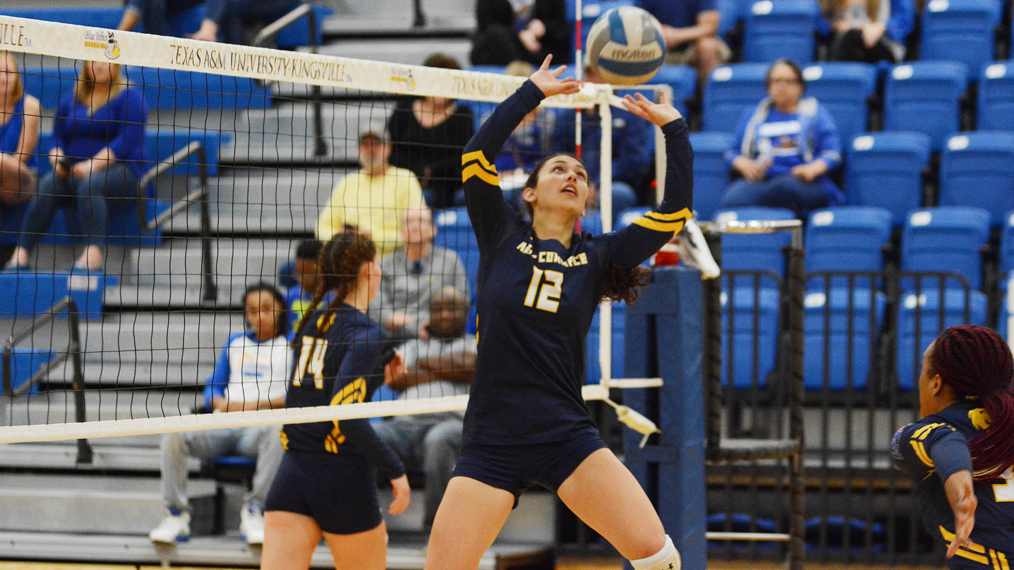 Rylie Fuentes Named Lsc Setter Of The Week Texas A M University Commerce Athletics