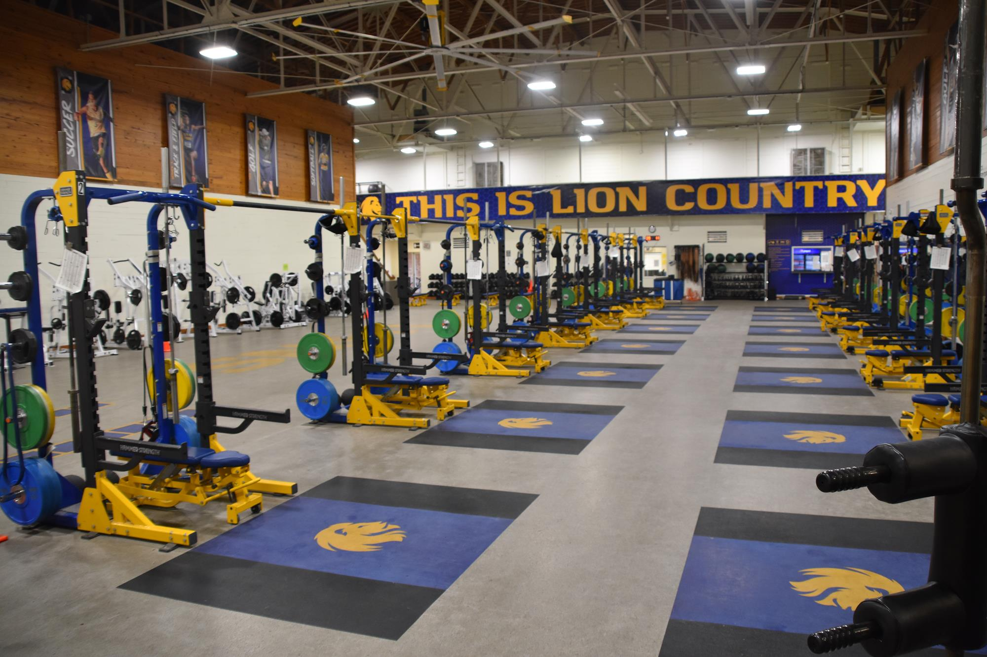 Whitley Gym Weight Room Facilities Texas A M University Commerce Athletics